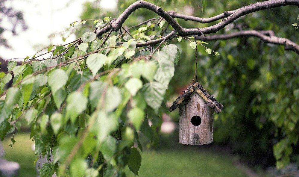 Къщичка за птички в градината